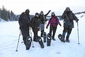 Yukon Aurora English Tour画像