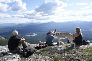 Yukon Midnight Sun English Tour画像
