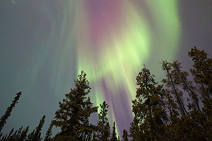 Yukon Aurora English Camp画像
