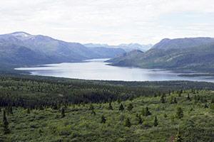半日・極北ハイキングツアー画像