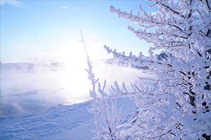 ホワイトホース オーロラハンティングツアー画像